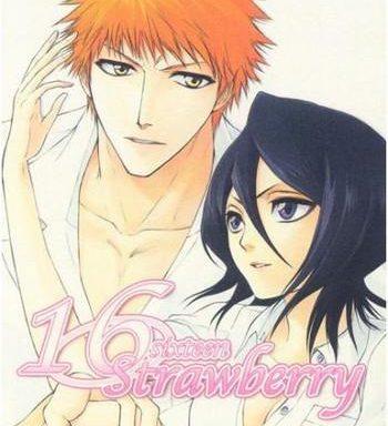 16strawberry cover